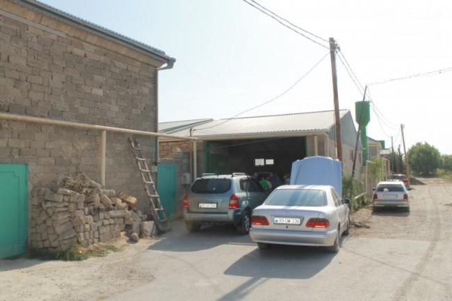 Amil Şəfiyev