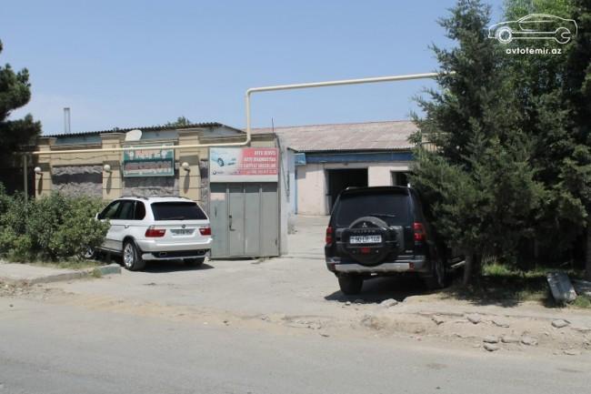 Telman Rəhimli
